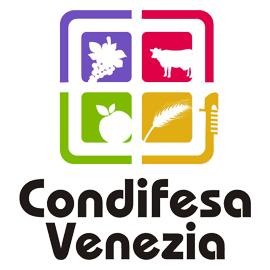Condifesa Venezia
